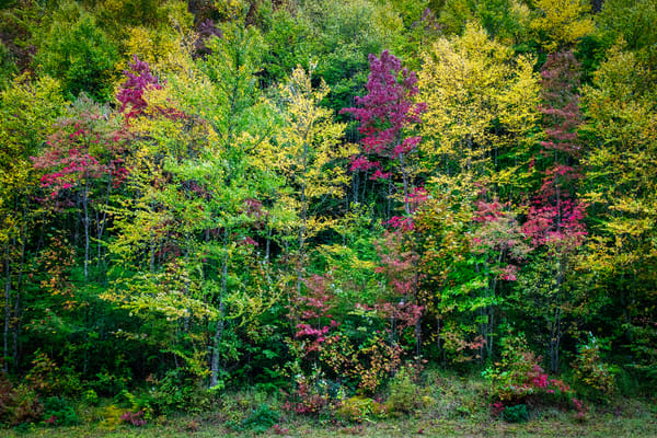Autumn Kaleidoscope - Smoky Mountains fine-art photography prints