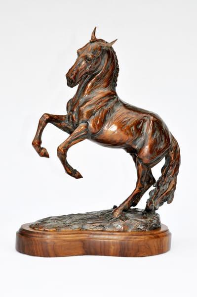 Janet's Bronze