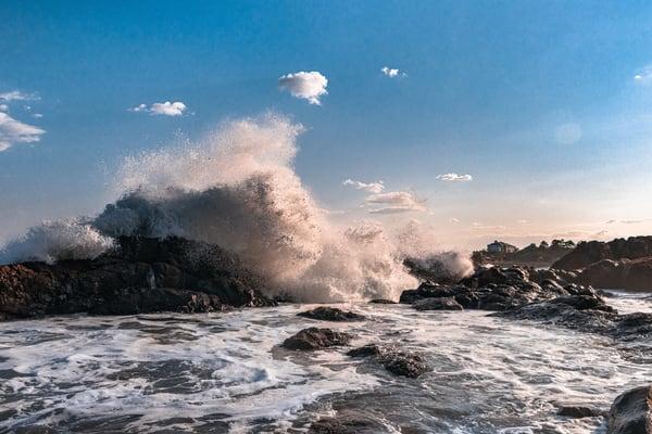 Teddy's Waves Art | capeanngiclee