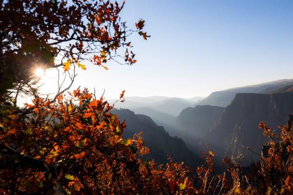 Black Canyon National Park Gunnison Colorado Fall Colors