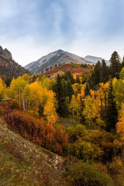 Telluride Colorado Fall Colors Autumn Landscape Photography