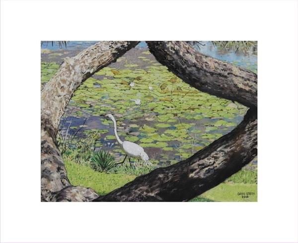 Egret At Lake Lily Art | Greg Stett Art