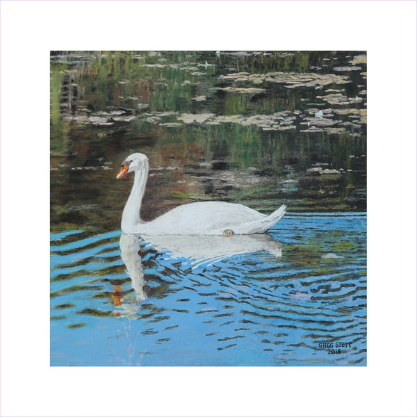 The Swan Art | Greg Stett Art