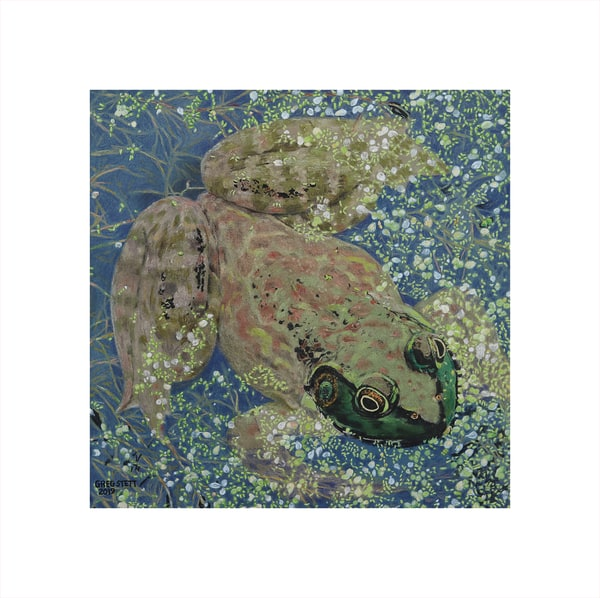 Frog Among The Duckweed Art | Greg Stett Art