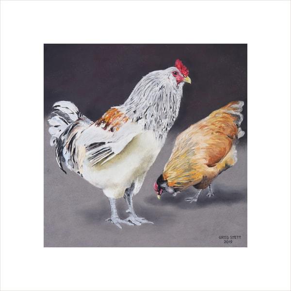 Vigilant Rooster Art | Greg Stett Art
