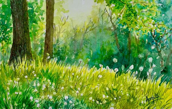 """""""Dandelions"""" in Watercolors by Aprajita Lal"""