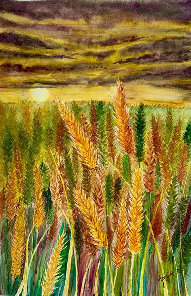 """Golden Harvest"" Art Print by Aprajita Lal"