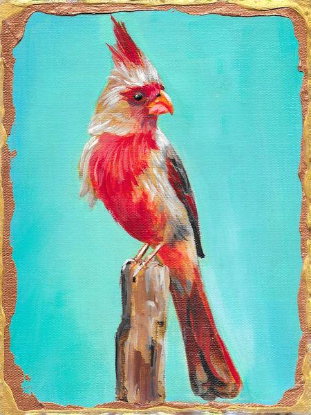 Pyrrhuloxia Art | Channe Felton Fine Art