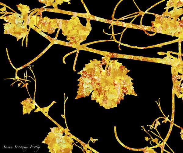 Chardonnay Vine 4   A Grapevine's Persona   Digital Art Series