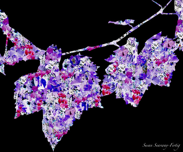 Wine Vine Essence I | A Grapevine's Persona | Digital Art Series