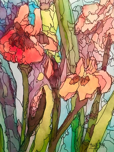 Peach Irises  Art | vibrant art studio, Art by Annette Dion McGowan