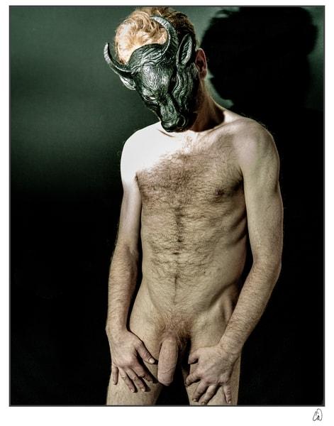 Masked Bull #1 Photography Art   Cid Roberts Photography LLC