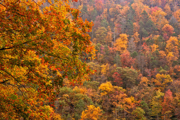 Autumn At The Gap Photography Art | Quiet Heart Images, LLC