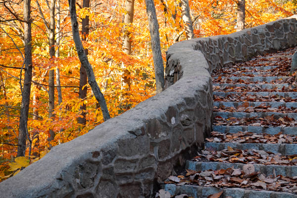 Autumn Stairway Photography Art | Quiet Heart Images, LLC