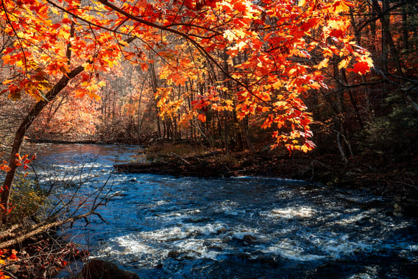 Autumn At The Gorge Photography Art | Quiet Heart Images, LLC