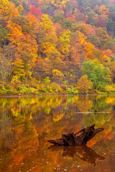 Autumn Reflection Photography Art | Quiet Heart Images, LLC