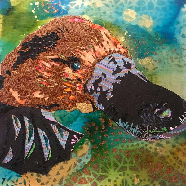 Platypus Art   Kristi Abbott Gallery & Studio