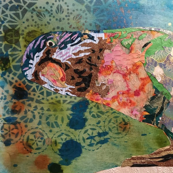 Rainbow Lorikeet Art   Kristi Abbott Gallery & Studio