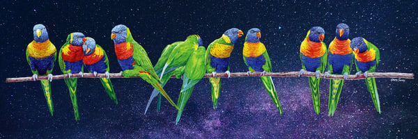 Aussie Rainbow Stars by Greg Smith is a mixed-media painting of Australian Rainbow Lorikeets (in color pencil) against a photographic starry night.