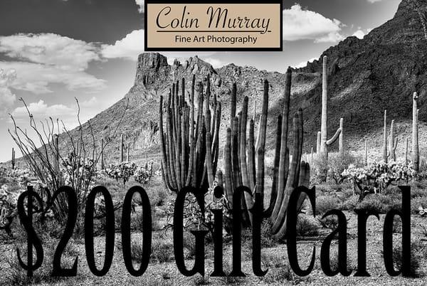 $200 Gift Card   Colin Murray Photography LLC