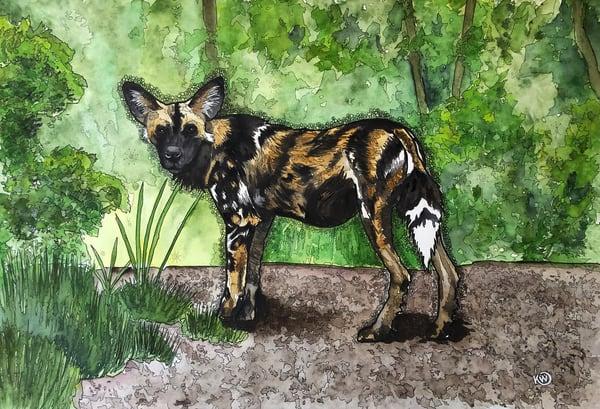 African Painted Dog Art | Water+Ink Studios