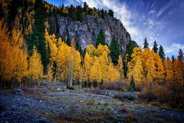 Autumn in Colorado | Shop Photography by Rick Berk