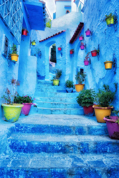 Blue Steps Vert Photography Art   nancyney