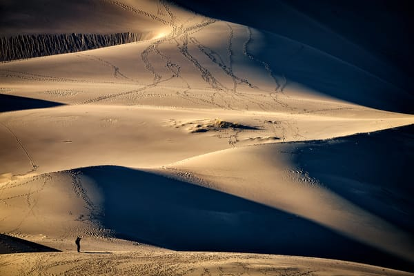 Photographing the Dunes | Shop Photography by Rick Berk