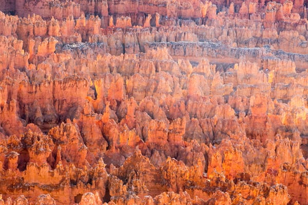 Bryce Canyon April 02 2017 5415 Photography Art | Brokk Mowrey Photography