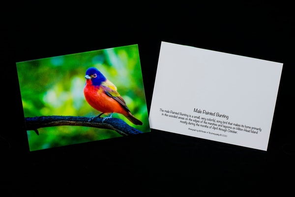 3 Boxes of 8 Note Cards - Special Order