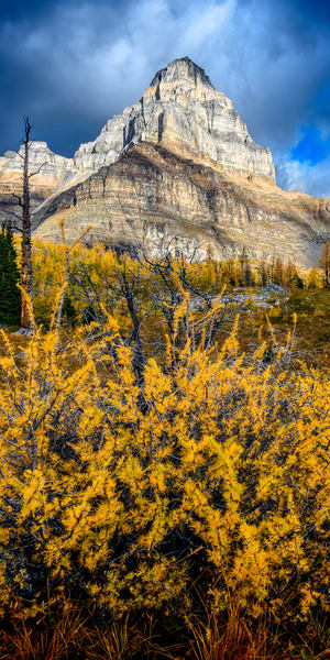 The Giant's Doorstep   Larch Valley, Alberta Photography Art | Byron Fichter Fotography