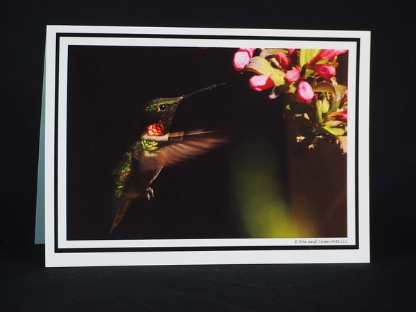 Hummingbird At Weigela Greeting Card