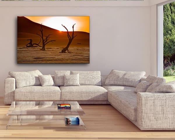 Dead Vlie Art Viewcrop Photography Art | nancyney
