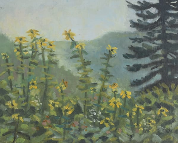Smokey Mountain Wildflowers   Original Art | Sharon Guy