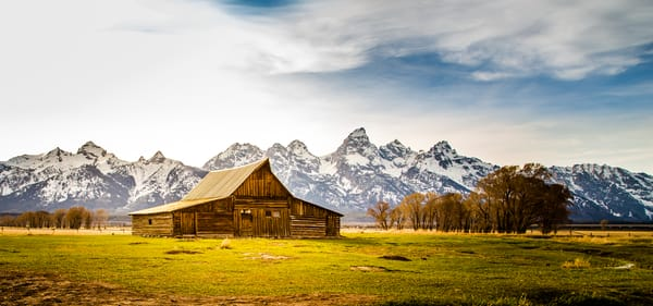 Grand Teton Barn In Fresh Snow