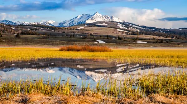 Electric Peak Swan Flats Yellowstone
