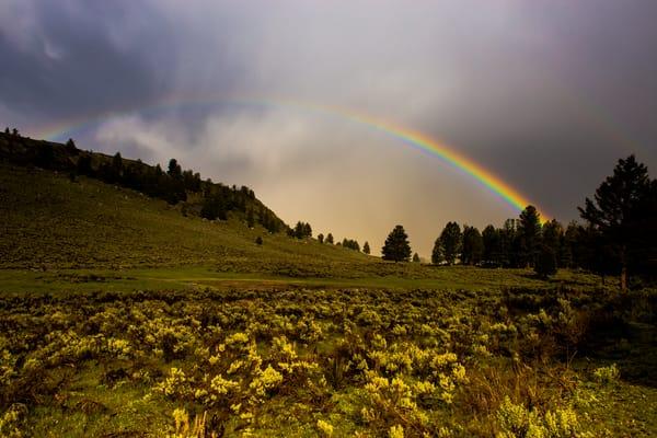Rainbow Artwork