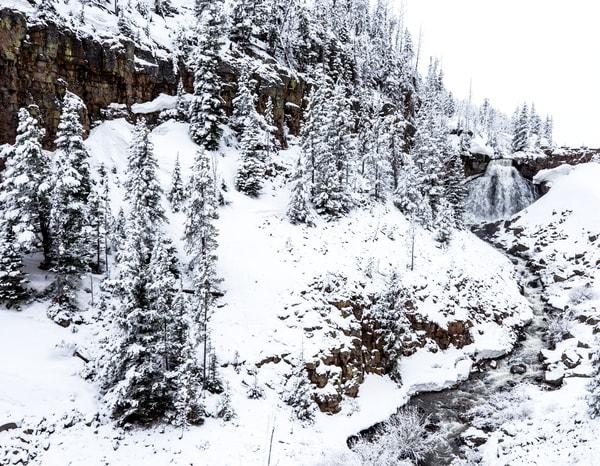 Rustic Falls Mammoth Hotsprings Yellowstone