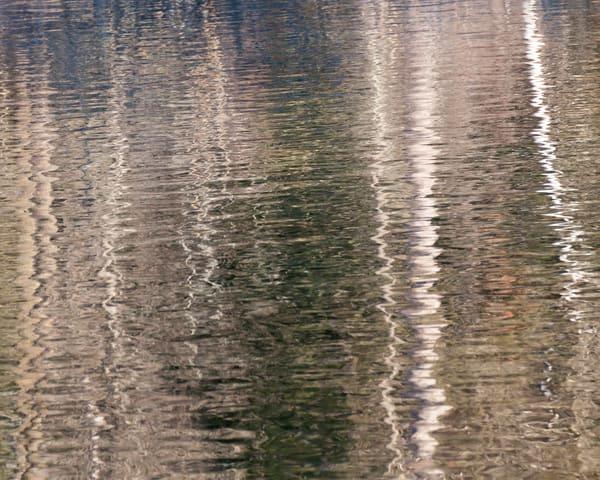 Winter Birch Reflection, photography by Jeremy Simonson.