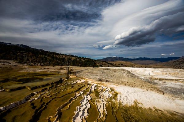 Upper Terrace Mammoth Hot Springs Yellowstone
