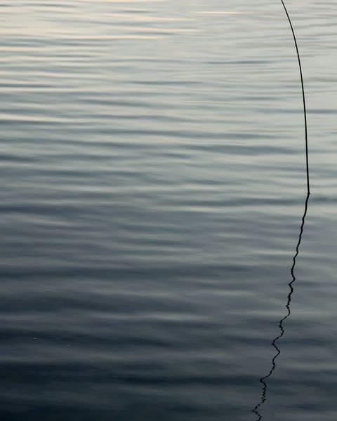 Evening Reed I, photography by Jeremy Simonson.
