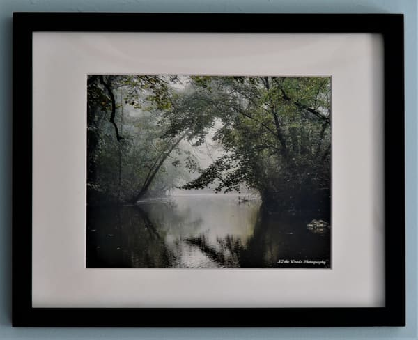 Early Morning Mist Framed Print | N2 the Woods Photography