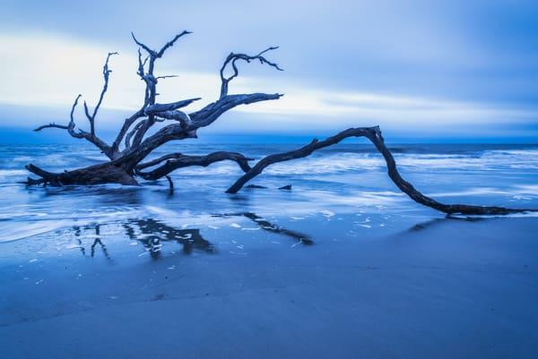 Sunrise Driftwood Reflections | Susan J Photography