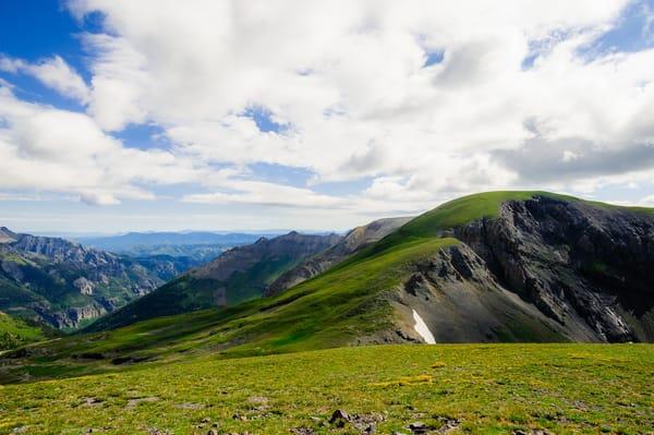 Alpine Meadows, Imogene Pass Road, Colorado, 2013