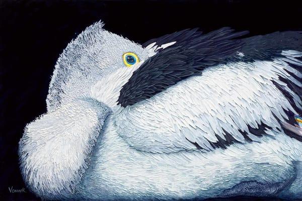 Covid Hibernation Blues