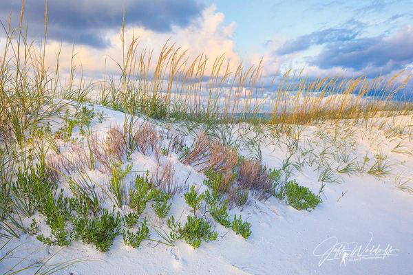 Florida's Gulf Islands National Seashore Fine Art Photographs - Fine Art Prints & Acrylic | Waldorff Photography