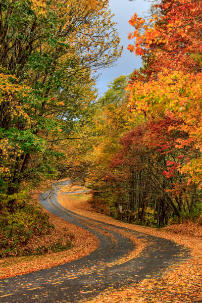 Curves Of Autumn Art | Red Rock Photography