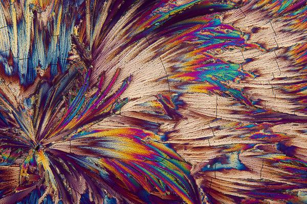 Feathers (Malic Acid Crystals) Art | Carol Roullard Art