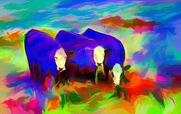 """""""Three Abstract Cows"""" Photography Art 