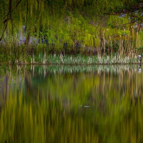 Reflection 3 Art | Moshe Volcovich